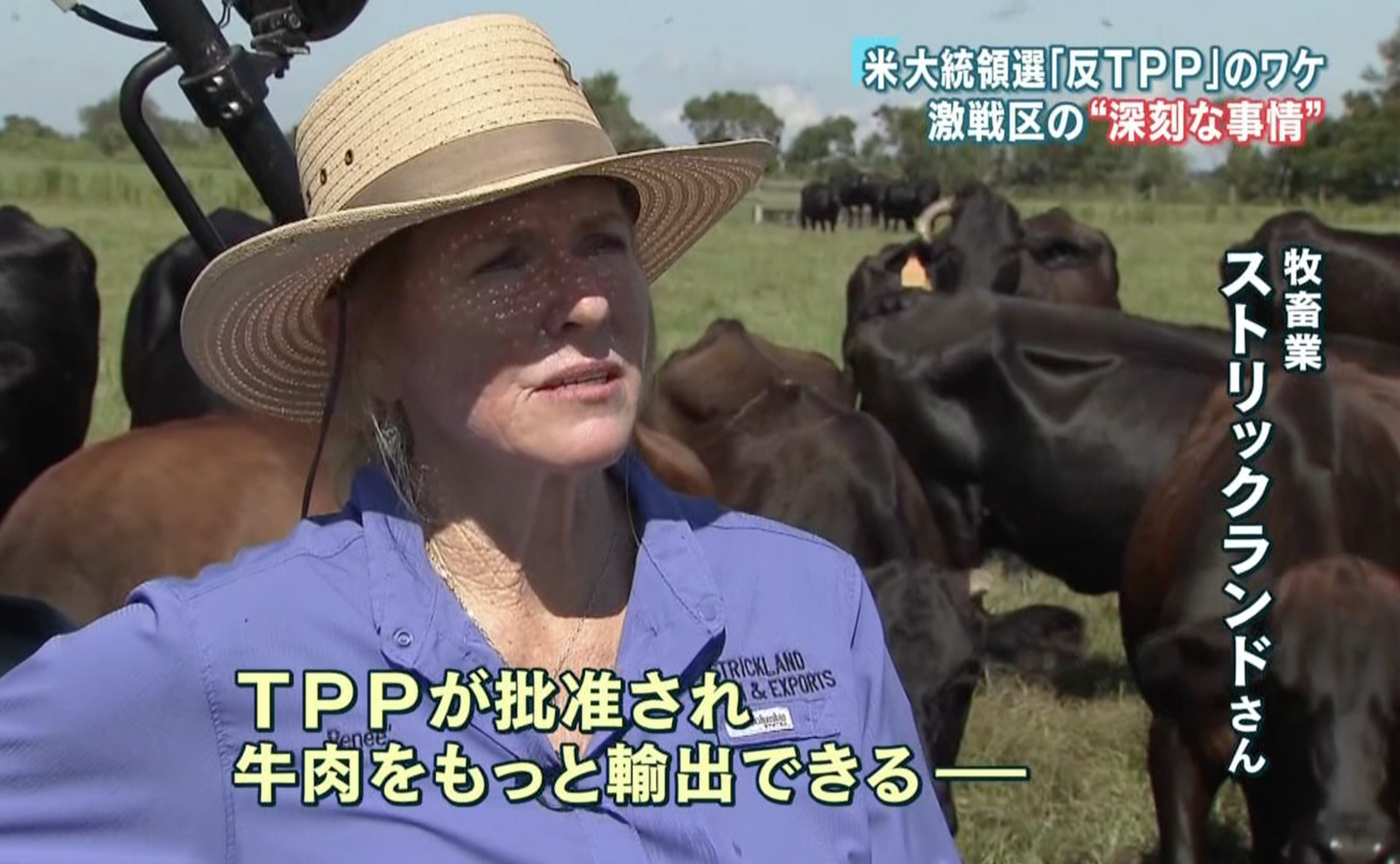 Reneé Strickland Weighs In On TPP And Its Role In The 2016 Election On Japanese News Program