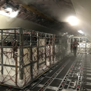 Florida Dairy Cattle Delivered To Panama2